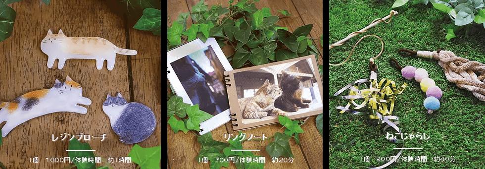 ねこねこわっしょい2 | Fanimal(ファニマル)