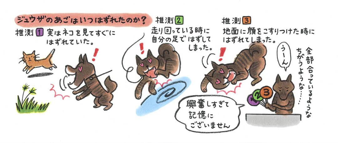 愛犬ジュウザのびっくり事件簿イラスト | Fanimal(ファニマル)