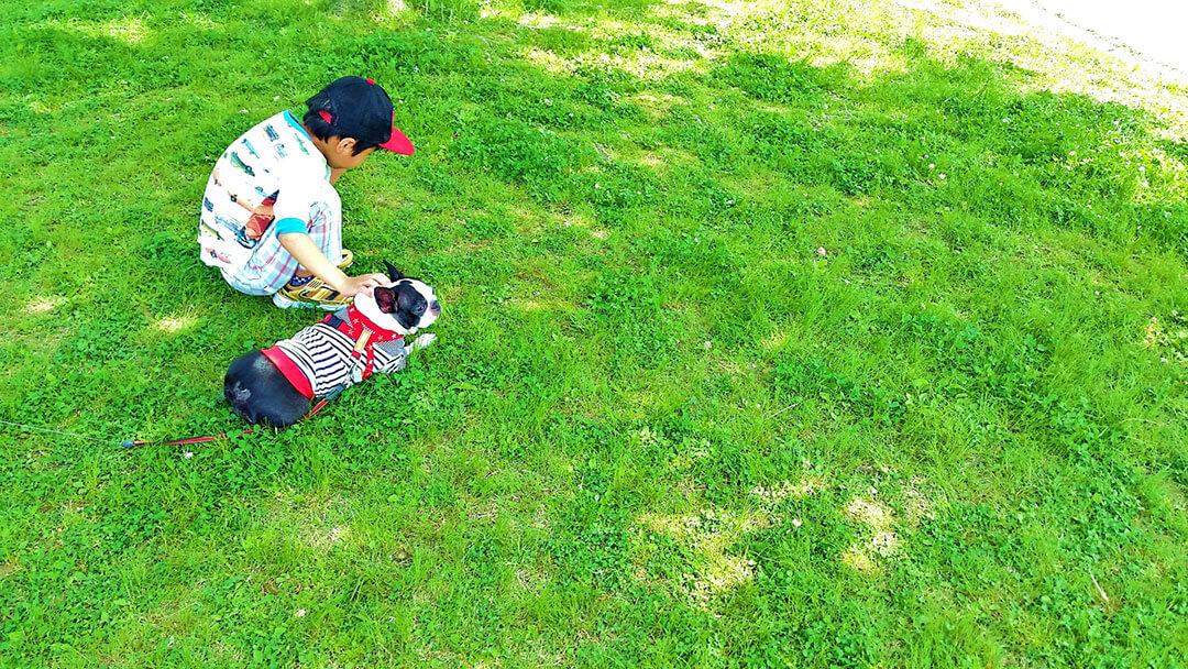 子供と犬 | Fanimal(ファニマル)