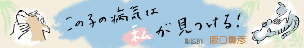 konoko_banner_large_final