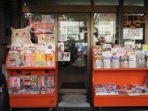 にゃんこ堂2 | Fanimal(ファニマル)